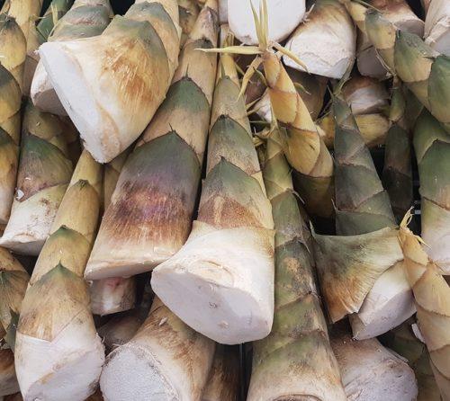 californian_living_fiber_bamboo-min